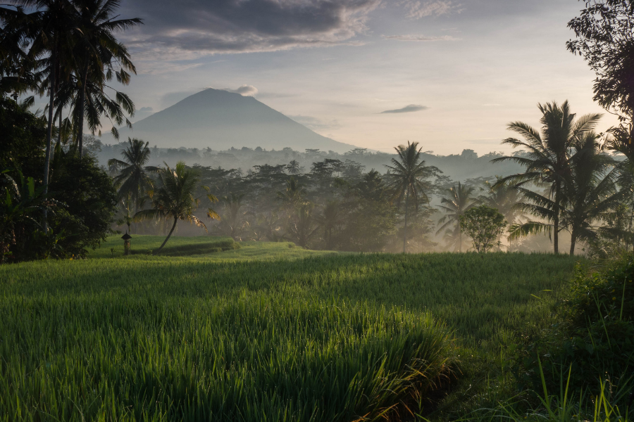 Cycle around Ubud to capture the best landscapes of Bali.